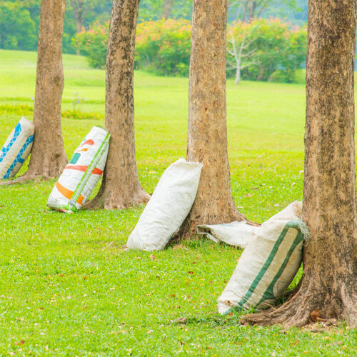 Trees and Bags of Fertilizer