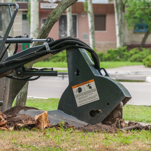 A Machine is Used to Remove a Tree Stump.